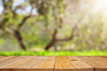 Empty rustic table in front of green spring abstract bokeh background. product display and picnic concept. Wall mural