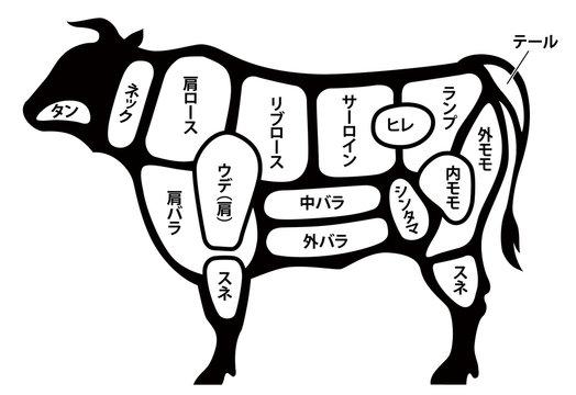 牛肉 ビーフ 部位 白背景