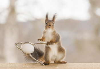 red squirrel touching a nutcracker with a egg