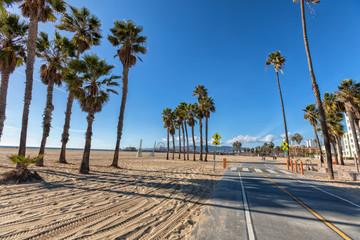 Santa Monica bike path at beach with palm trees view