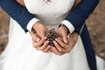 Groom embraces bride in a pine forest, their hands holding a lump