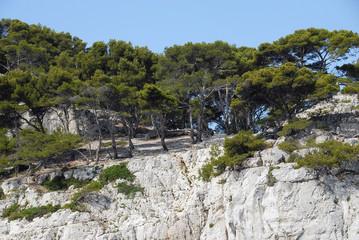 Calanques de Port-Miou vers Cassis, La Ciotat, Marseille, Provence
