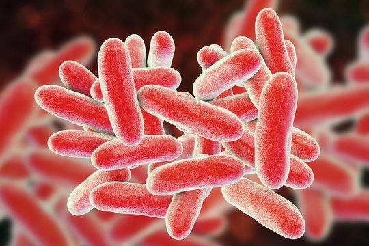 Legionella pneumophila bacteria, 3D illustration, the causative agent of Legionnaire's disease