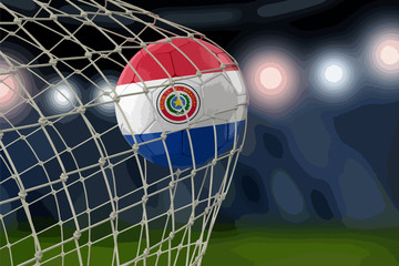 Paraguayan soccerball in net