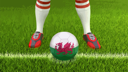 Man and soccer ball with Welsh flag