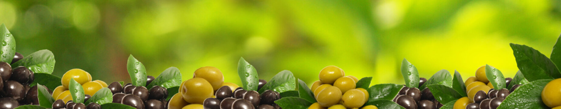 Olives from your favorite garden