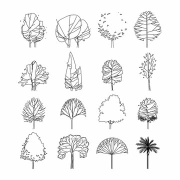 Side view, set of graphics trees elements outline symbol for architecture and landscape design drawing. Vector illustration