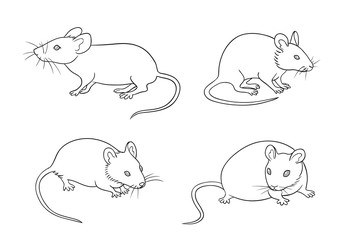 Mice in contours - vector illustration