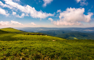 fluffy clouds rolling above the mountain meadow. beautiful landscape on high altitude in summer
