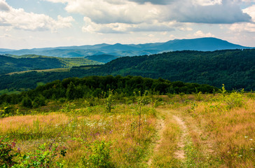 country road through grassy hillside. lovely summer scenery of Carpathian mountains