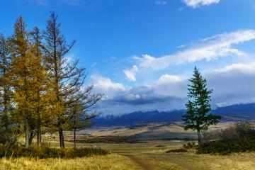 The landscape of Altai mountains , in autumn, Siberia, Russia.