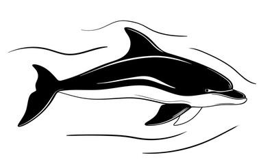 dolphin, hand drawn stock vector illustration