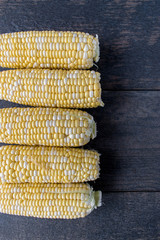 fresh corn on the cob yellow and white kernels in a row top view