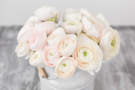 Persian buttercup. Bunch pale pink ranunculus flowers light background. Glass vase on pink vintage wooden table. Wallpaper
