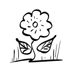 flower plant with two leaves vector illustration sketch hand drawn with black lines isolated on white background
