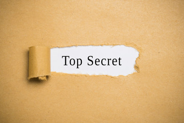 "torn up paper revealing ""top secret"""