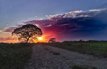 beautiful landscape and sunset in venezuela