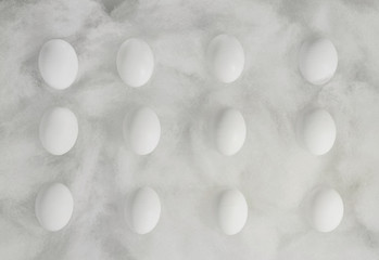 Row of eggs on white silk threads.