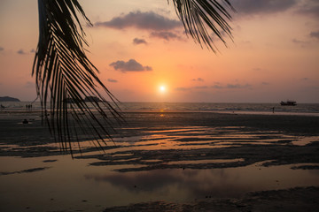 Sea beach through palm leaves during amazing Sunset. .