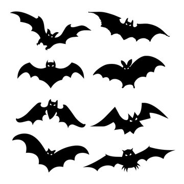 Bat Bird Animal Silhouette Black Icon Flat Design Element Vector Illustration