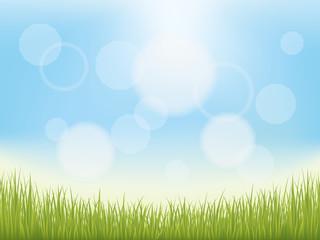 青空と芝生