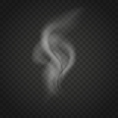 Transparent smoke isolated on dark background