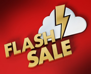 Flash sale text, cloud and lightning icon. 3D illustration