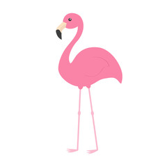 Pink flamingo with wing. Exotic tropical bird. Zoo animal collection. Cute cartoon character. Decoration element. Flat design. White background. Isolated.