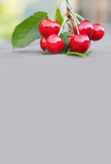Summer fruits harvest concept. Red cherries berry green leaf close-up. Beige background copy space. Selective focus, shallow depth of field.
