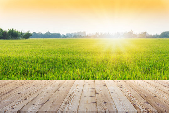 Perspective brown wooden board empty table in front of paddy field in morning time with sunlight on background - can be used for display or montage your products.Mock up for display of product.
