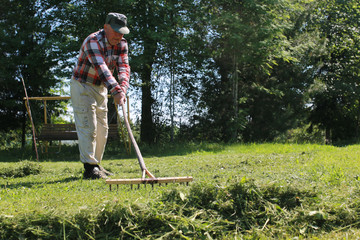 Cleaning with a rake on a farm