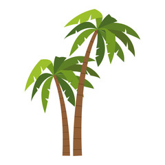 Tree palms cartoons vector illustration graphic design
