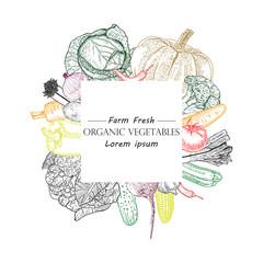 Healthy organic food vector illustration. Farm market label. Engraved style. Vegetables