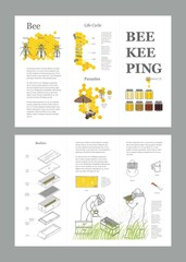 Beekeeping honey vector template with apiculture equipment, beekeeper, smoker, beehive, bee, honeycomb, illustrating the life cycle of a bee, bee parasites, honey gathering
