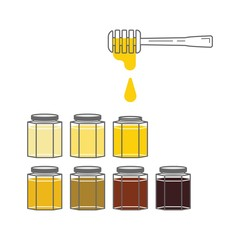 Several jars with honey of different colors