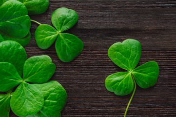 Shamrocks on Dark Table