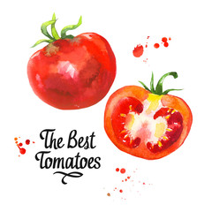 watercolor vegetables illustrations. Fresh organic food. Set of red tomatoe. Simple painting sketch.