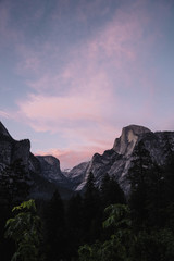 View of trees and mountain at Yosemite National Park during sunset