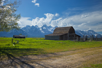 Old barn below the Grand Teton mountains in Wyoming