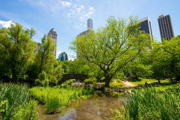 Central Park - Manhattan - New York, USA.