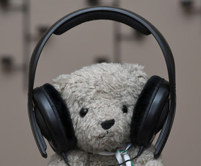 Audiophile Teddy Bear wearing Headphones