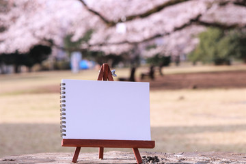 桜 スケッチ