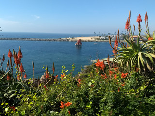 View of boat sailing in Newport Harbor, California, USA, through aloe vera plants.