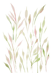 watercolor illustration of green twigs and grass,