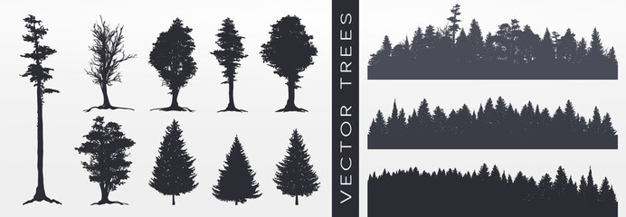 Forest silhouette, vector illustration. Wall mural