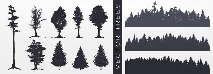 Forest silhouette, vector illustration. Fototapete