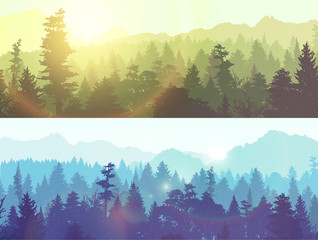 Forest silhouette, vector illustration.