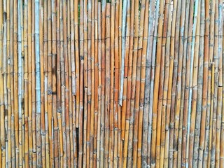 Natural detailed bamboo fence in tropics textured wall as a background