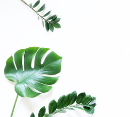 Green tropical leaves on white background. Flat lay, top view, copy space