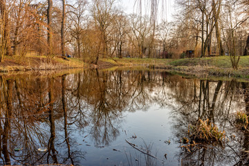 Pond in Jena with reflection in the water